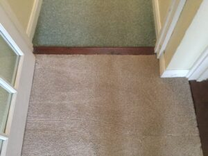 Carpet staining after